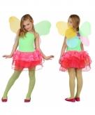 Kinder kostuum vlinder groen rood