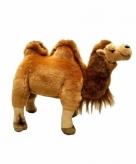 Knuffel kameel van 26 cm