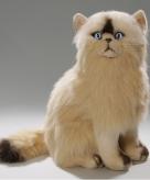 Knuffel kat persisch van 35 cm