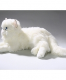 Knuffel kat wit van 35 cm