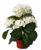 Kunst hortensia wit 36 cm