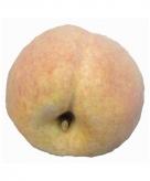 Kunst perziken 8 cm