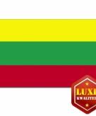 Litouwse vlag goede kwaliteit