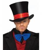 Luxe hoge hoed voor volwassenen