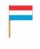 Luxemburg zwaaivlaggetjes