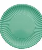 Mint groene wegwerp bordjes 23 cm