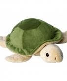 Opwarmbare knuffel schildpad 10083478