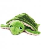Opwarmbare knuffel zeeschildpad