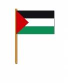 Palestina zwaaivlaggetjes