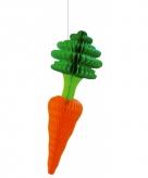 Papieren groente decoratie 40 cm