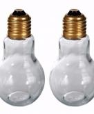 Peper en zoutstrooiers set lamp vorm