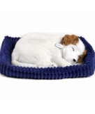 Perfect petzz jack russel knuffel hond