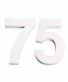 Piepschuimen cijfer 75 25 cm