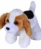 Pluche beagle hond knuffeldier 18 cm