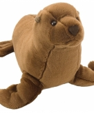 Pluche knuffel zeeleeuwen 20 cm