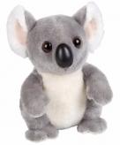 Pluche koala knuffeldier 18 cm 10084245