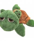 Pluche schildpad 24 cm