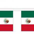 Polyester mexico vlaggenlijn