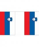Polyester vlaggenlijn slovenie