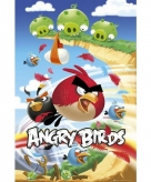 Poster angry birds 61 x 91 5 cm