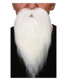 Puntige witte baard met snor