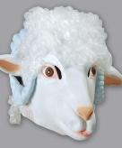 Ram schaap masker wit