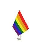 Regenboog autovlag