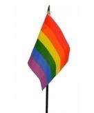 Regenboog vlaggetje polyester