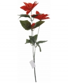 Rode kerstbloem 66 cm