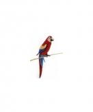 Rode papegaai knuffel 72 cm