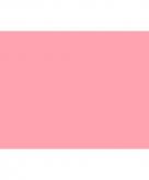 Roze vlaggen 150 x 90 cm