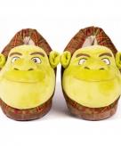 Shrek sloffen voor kinderen