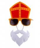 Sinterklaas snorbril