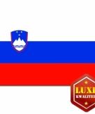 Sloveense vlag goede kwaliteit