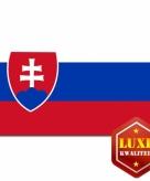 Slowaakse vlaggen goede kwaliteit