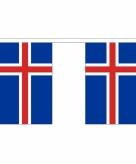 Stoffen vlaggenlijn ijsland 3 meter