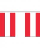 Stoffen vlaggenlijn oostenrijk 3 meter