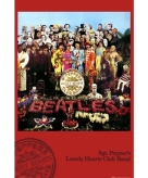The beatles maxi poster 61 x 91 5 cm
