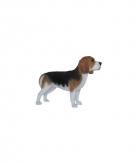 Tuinbeeld beagle hond groot