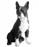 Tuinbeeld boston terrier 41 cm