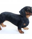 Tuinbeeld zwarte teckel hond 50 cm