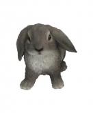 Tuinbeeldje grijs hangoor konijntje 15 cm