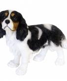 Tuinbeeldje king charles hondje 31 x 41 x 15 cm