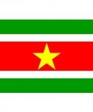 Vlag van suriname mini formaat 60 x 90 cm