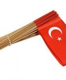 Vlaggetje turkije 50 st