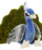 Vogel knuffeldier pauw 24 cm