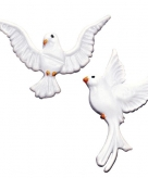 Was duifje voor een waxkaars
