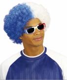 Wit blauwe afropruik