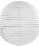 Witte lampion rond 50 cm 10071279