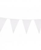 Witte vlaggenlijn groot 45 x 30 cm